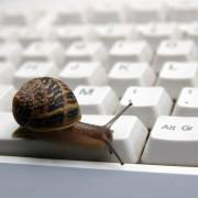 Caracol sobre teclado